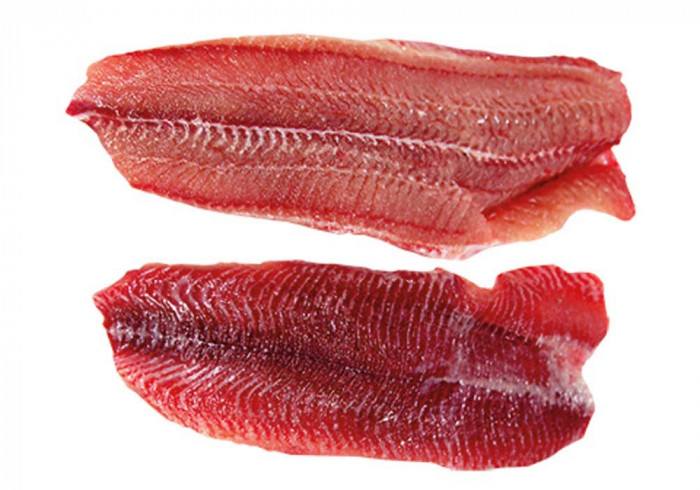 Catfish fillet, red meated