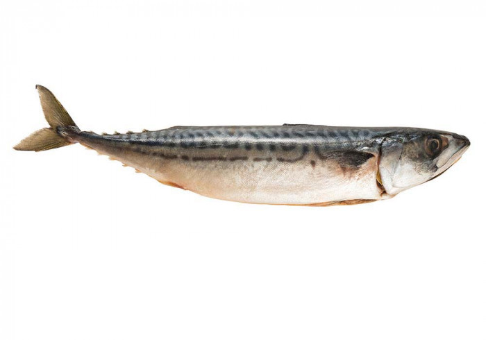 Mackerel (for grilling on a stick)400-600 g