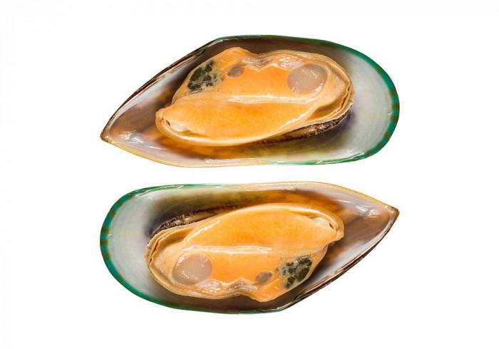 Grünschalen-Muscheln